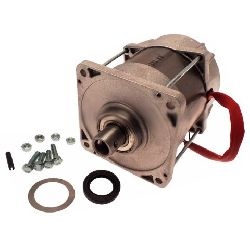 119RIA025 Электродвигатель FROG A24